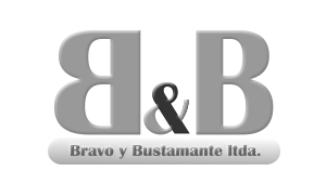 Logo Bravo y Bustamanete Ltda Somos profesionales en cableado estructurado, fibra optica, camaras de seguridad, Circuito Cerrado de Television, Estamos ubicado en Santiago de chile